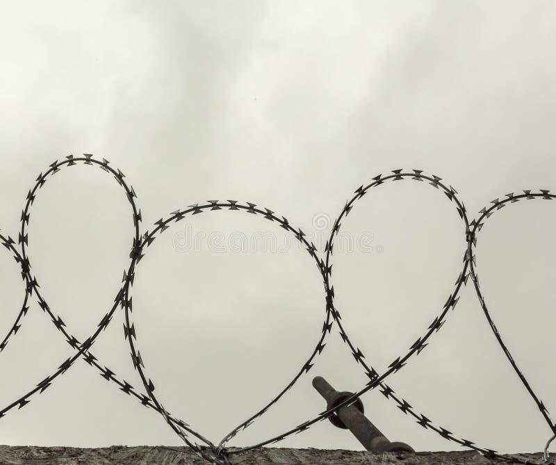 锋利的钢铁丝网 图库摄影