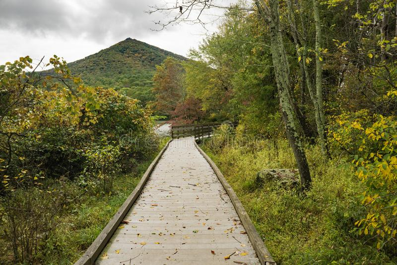 锋利的顶面山、Abbott湖和木板走道秋天视图  库存照片