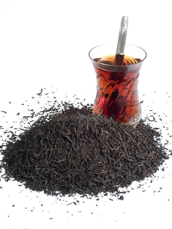 锡兰茶 免版税图库摄影