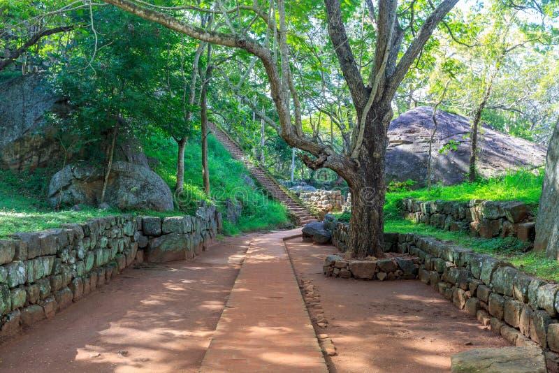锡吉里耶城堡废墟在Sri Lnaka 免版税库存照片