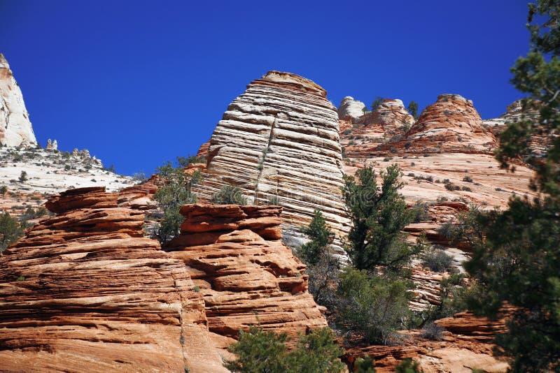 锡安国家公园,美国 免版税库存图片