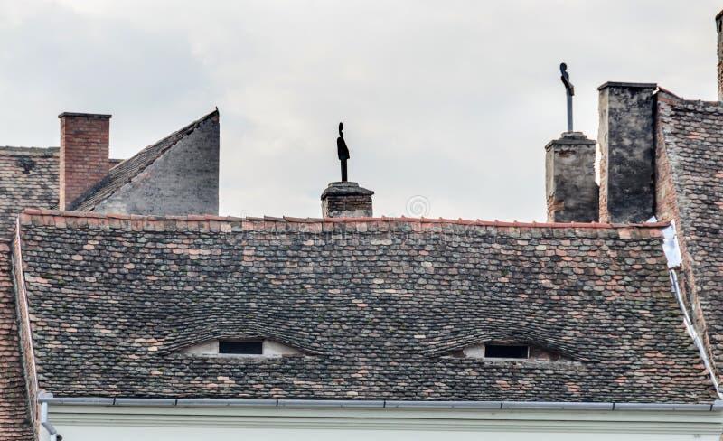 锡比乌,罗马尼亚:房子细节位于了近城市的街市 有眼睛窗口的屋顶 免版税库存图片