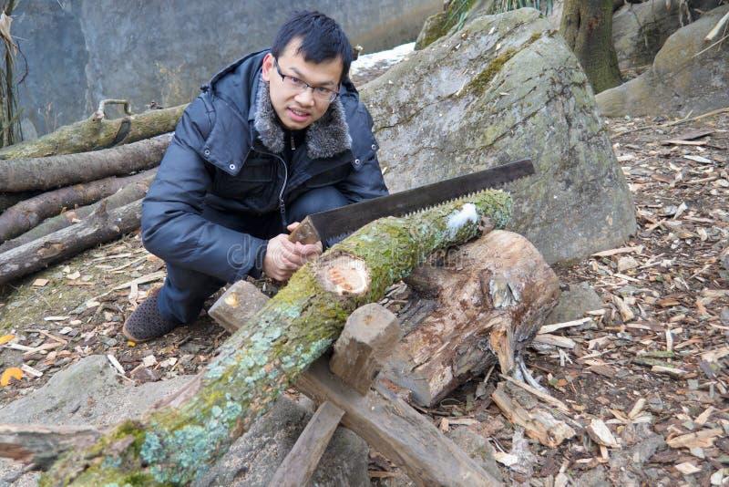 锯切木头 免版税库存图片