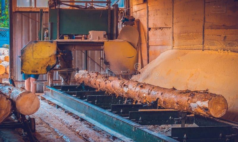 锯木厂 加工的过程注册锯木厂机器锯树干 图库摄影