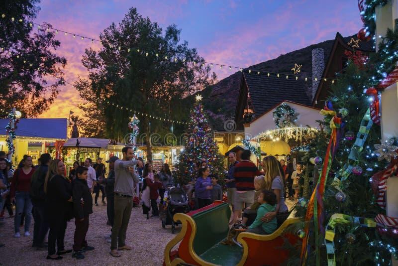 锯木屑艺术在拉古纳海滩的冬天节日夜视图  免版税图库摄影