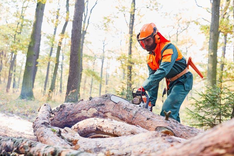 锯树干的防护衣裳的伐木工人 库存图片