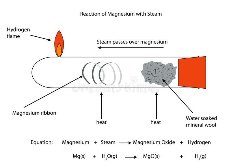镁反应的充分地被标记的例证与蒸汽的 库存例证