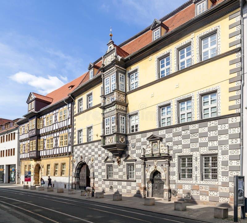 镇博物馆。位于Haus zum Stockfisch,在埃福特 免版税库存照片
