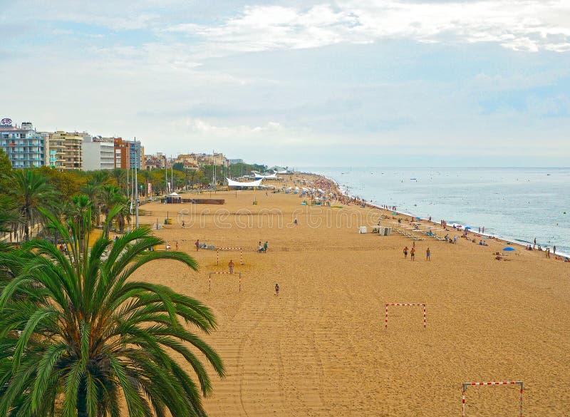 镇卡莱利亚,一部分海滩的肋前缘Brava目的地在卡塔龙尼亚,在巴塞罗那附近,西班牙 库存图片