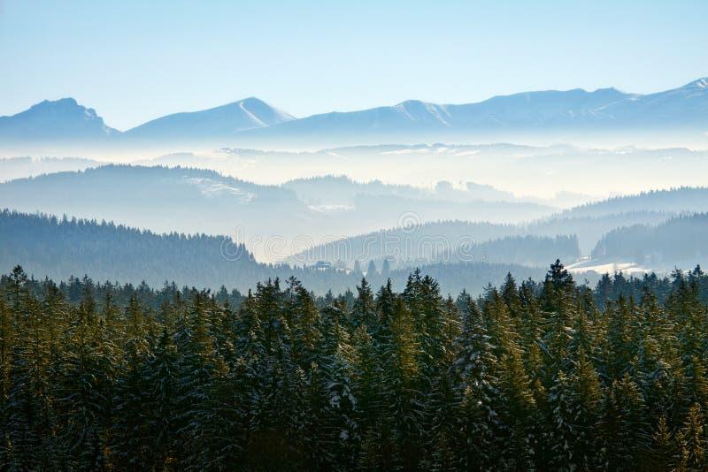 镇静横向早晨山冬天 免版税库存照片