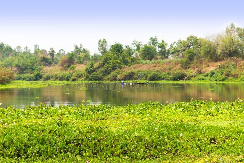 镇静河和绿色森林,好的平安的风景 免版税库存图片