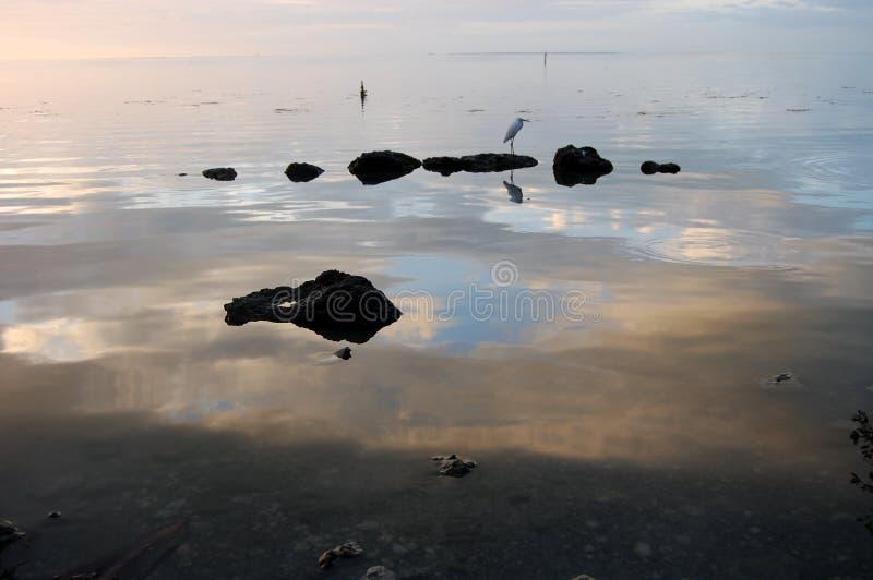 镇静海洋 免版税图库摄影