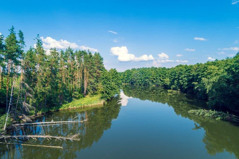 镇静湖的鸟瞰图在森林里 免版税库存图片