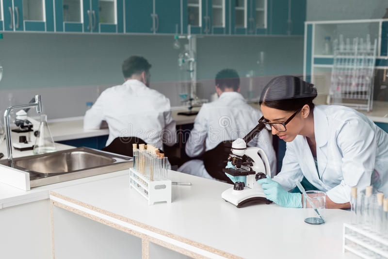 镜片的女性科学家与显微镜一起使用,当坐后边在实验室时的同事 库存图片