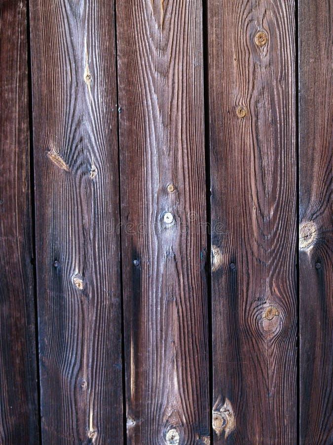 镶板木头 库存照片