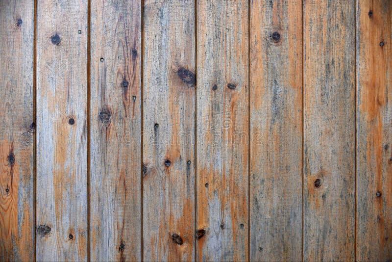 镶板木头 图库摄影