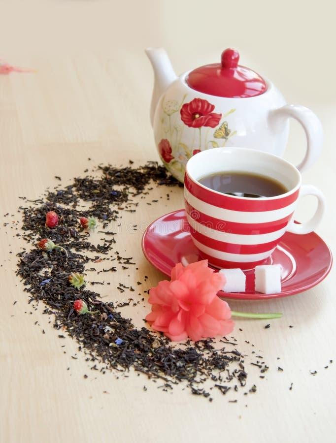 镶边杯子用在茶碟的茶编结糖立方体, semicirc 库存图片