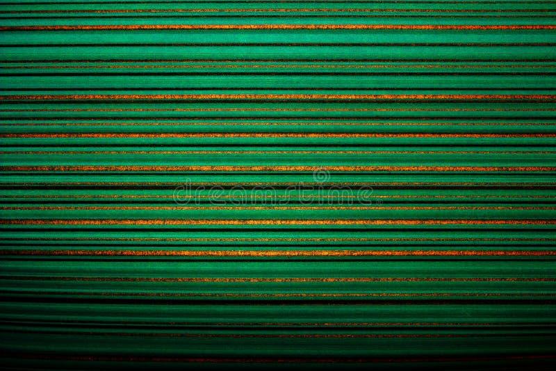 镶边的墙纸 在金子颜色水平的条纹的鲜绿色的背景,变暗,小插图 免版税图库摄影