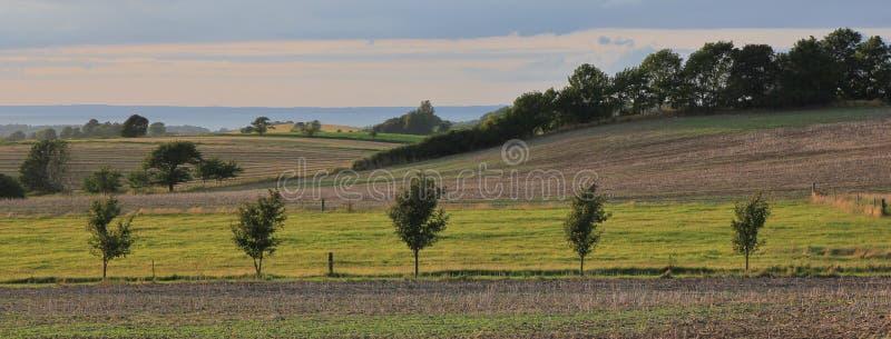 镶边风景在西兰,丹麦 包括小山的领域 库存照片
