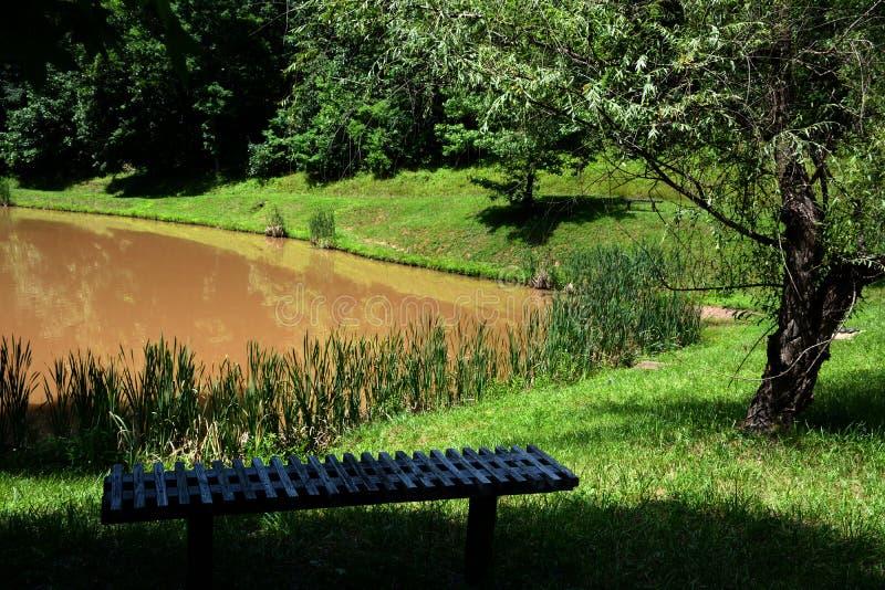 长凳俯视的池塘 免版税库存照片