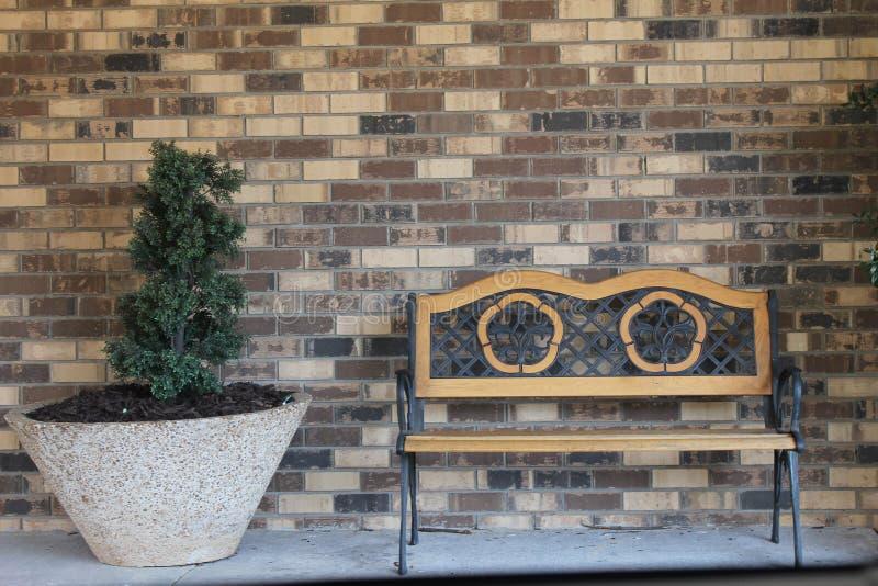 长凳和一点树装饰 免版税库存图片