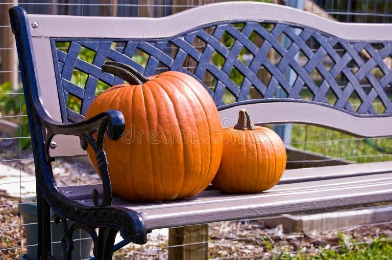 长凳和南瓜。 库存照片