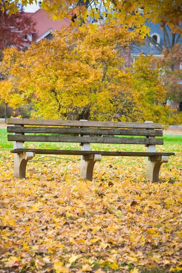 长凳和秋天叶子在公园 免版税库存照片