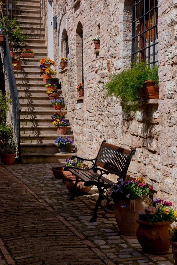 长凳和花在老镇阿西西,翁布里亚,意大利 库存照片