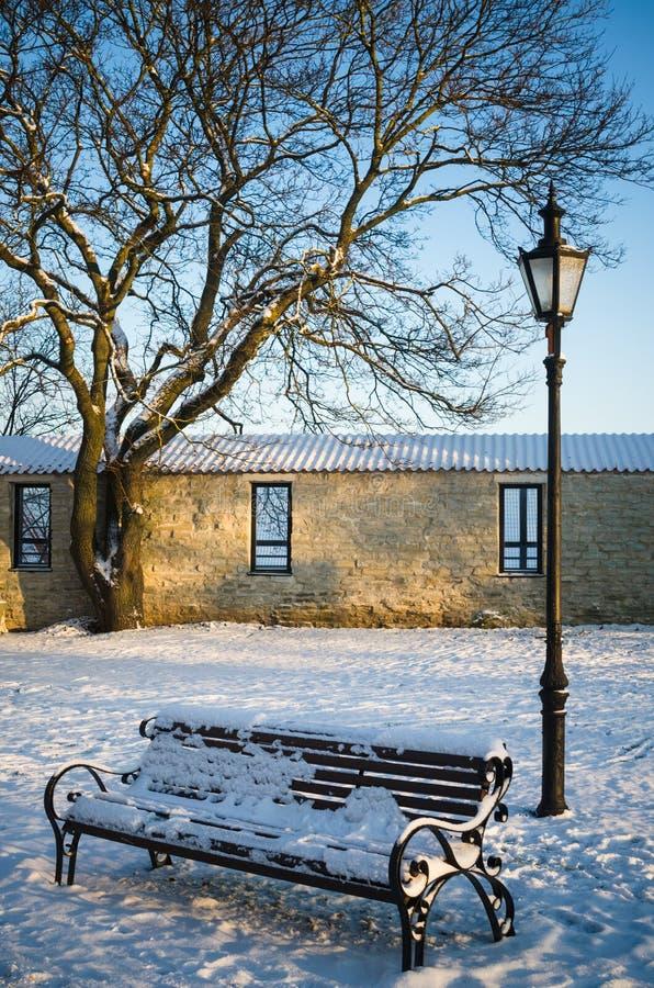 长凳和街灯在公园冬天老塔林 免版税库存图片