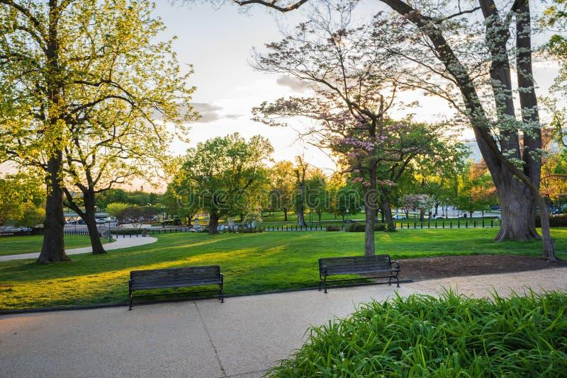 长凳在全国购物中心公园华盛顿美国临近道路 免版税图库摄影