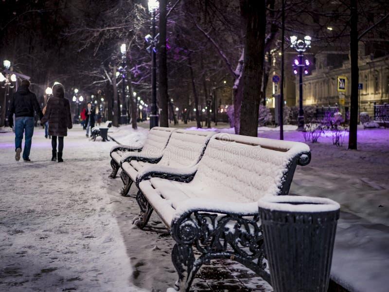长凳在城市停放在冬天多雪的nigt 免版税库存照片