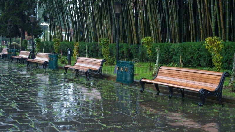 长凳在巴统公园在一下雨天 免版税库存图片