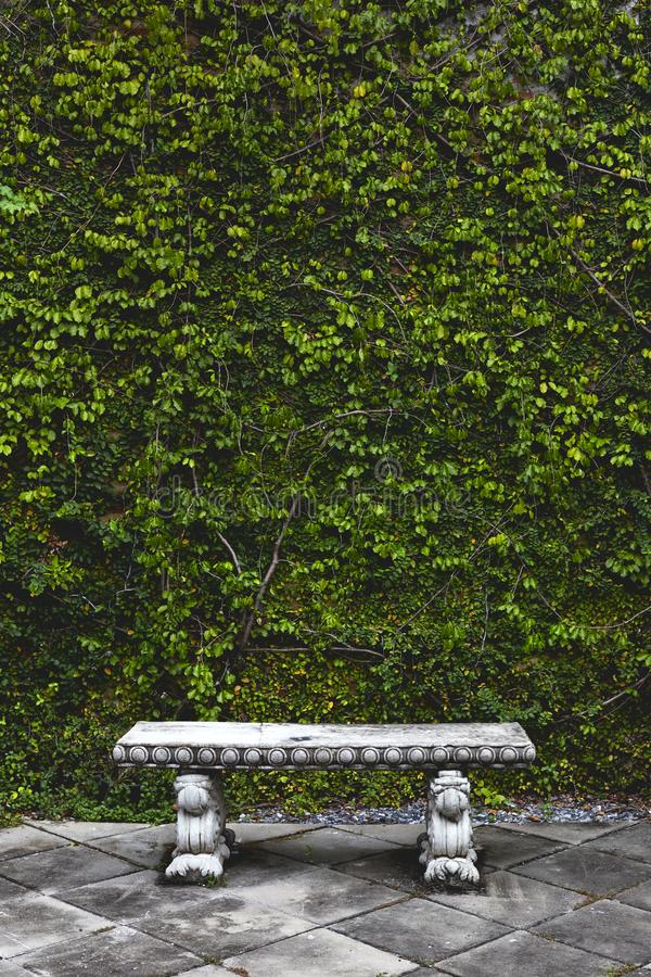 长凳在庭院后院,庭院装饰 免版税库存照片