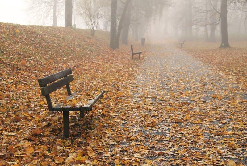 长凳在有薄雾的秋天公园 图库摄影
