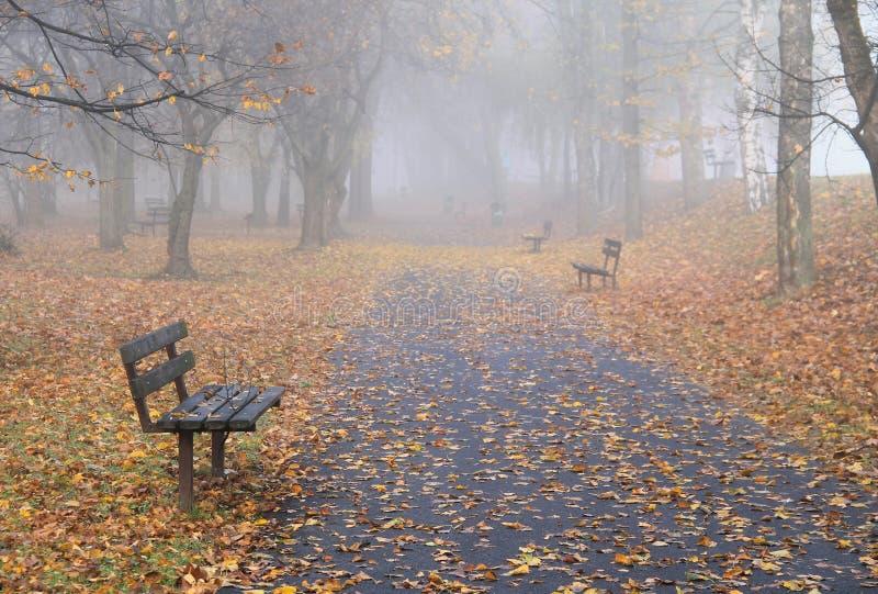 长凳在有薄雾的秋天公园 免版税库存照片