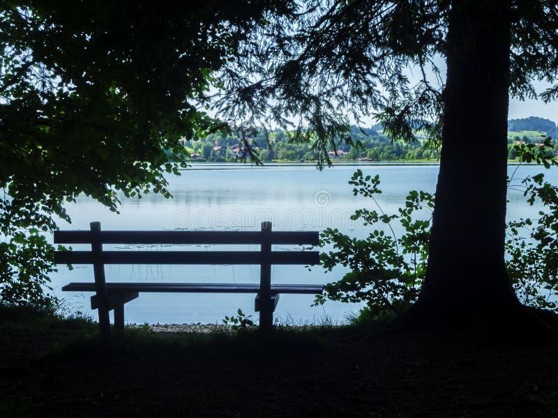 长凳在树荫下 库存照片