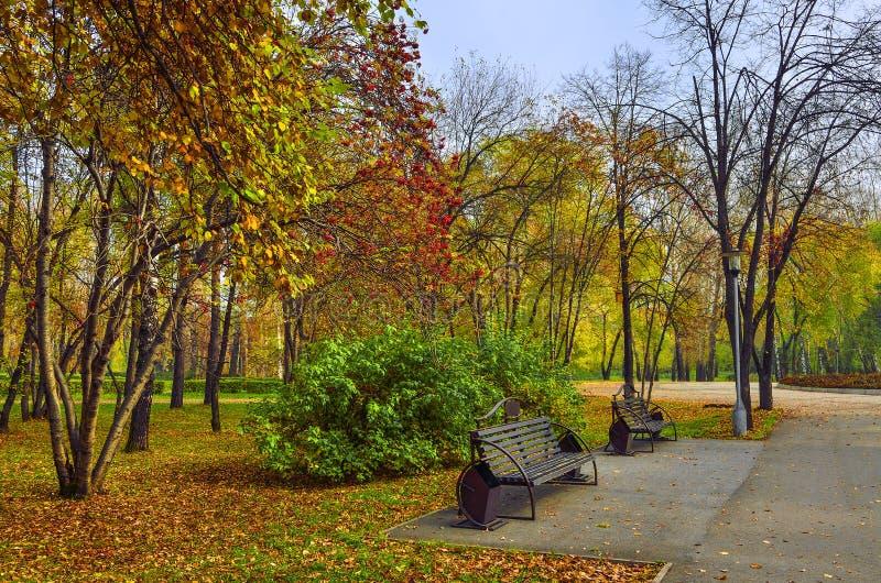 长凳在秋天公园 库存图片