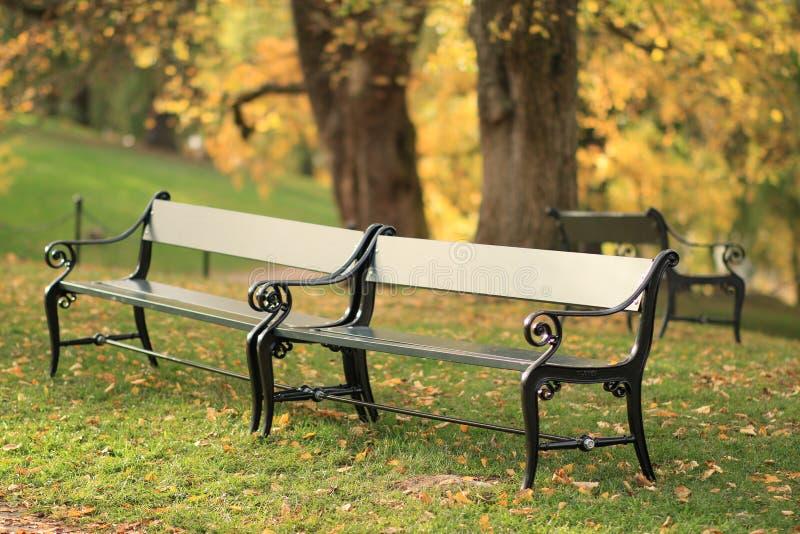 长凳在秋天公园 图库摄影