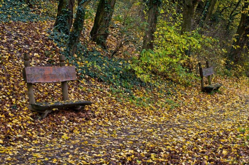 长凳在秋天 图库摄影