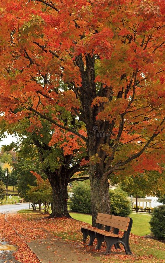 长凳在秋天 免版税库存图片