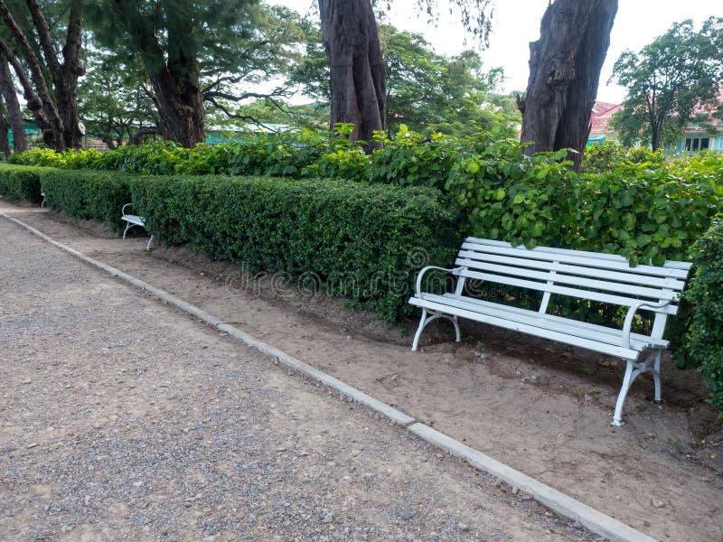 长凳在遮荫庭院里 免版税库存照片