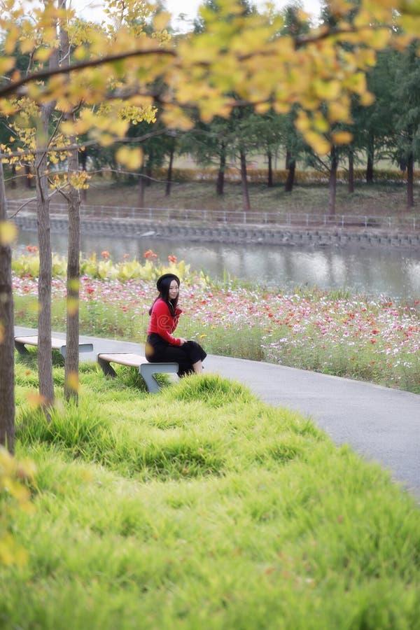 长凳坐的妇女年轻人 雏菊,自由 免版税图库摄影