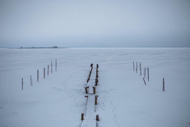 长凳照片由桦树日志,多雪的领域做成 库存图片