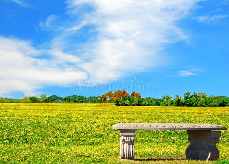 长凳草甸 免版税库存照片