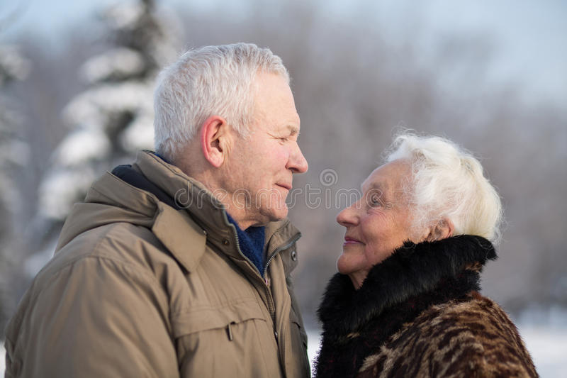 年长夫妇在冬天公园 图库摄影