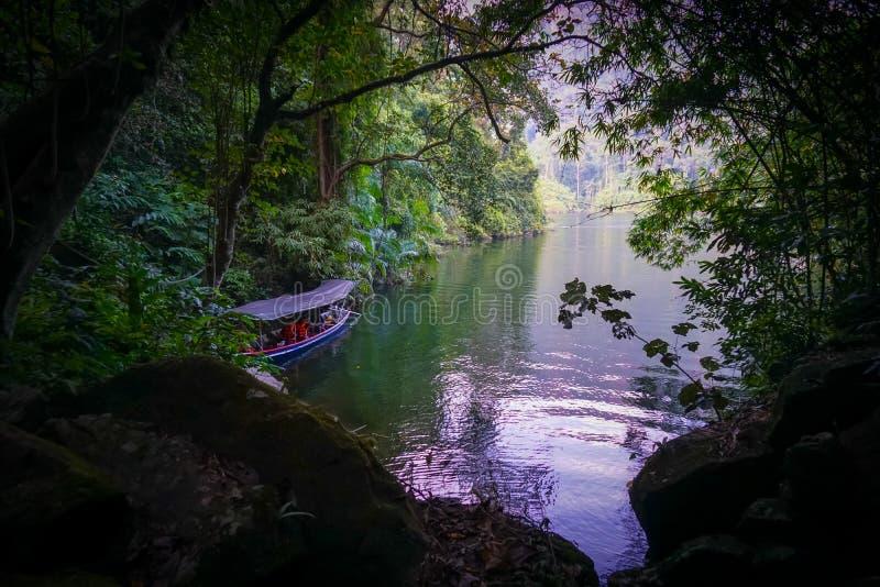 长尾巴小船停车处在森林里 免版税库存图片