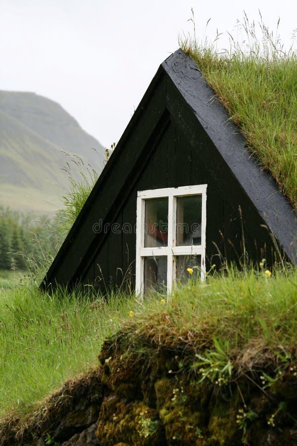 长得太大的房子屋顶 免版税图库摄影