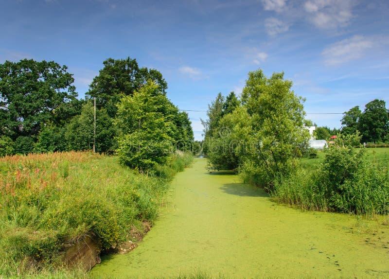 长得太大的草运河 老湿软的运河 有用泥盖的死水的海峡 免版税库存图片