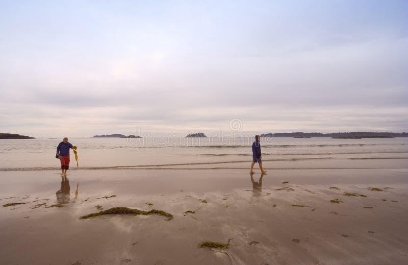 长期海滩系列国家和平的公园外缘 库存图片