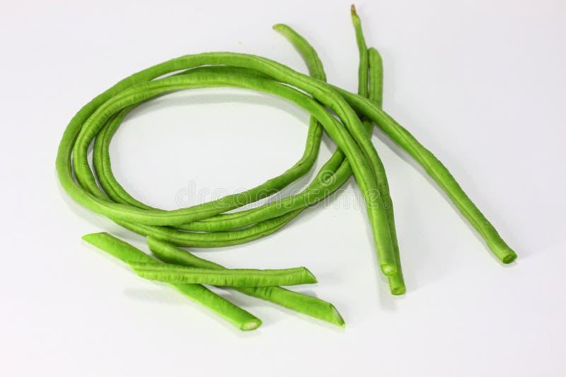 长期豆 这些长的豆类似于法语,并且可以相似地准备和被烹调 图库摄影